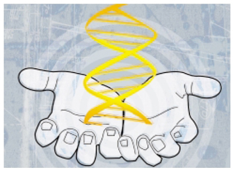 An illustration shows two disembodied hands in a cupped position, with the open palms of each hand facing upward. The hands are grey against a light blue background, and are cupping a yellow, simplified DNA molecule rising out of them. The DNA molecule is composed of two parallel strands coiled together to form a double-helix. Horizontal lines are arranged in parallel from the top of the molecule to the bottom, connecting the two strands, and resemble rungs on a ladder.