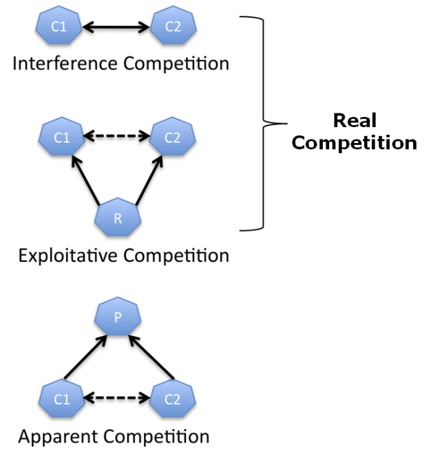 Species Interactions And Competition Learn Science At Scitable