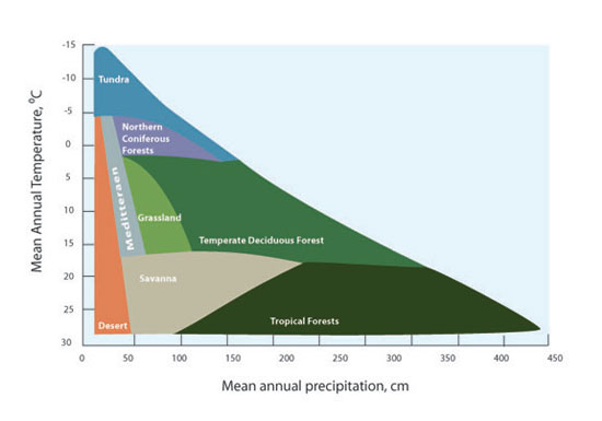 The Distribution Of Vegetation Types As A Function Mean Annual Temperature And Precipitation