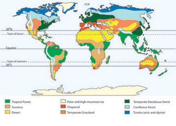 Savanna Biome World Map.Terrestrial Biomes Learn Science At Scitable