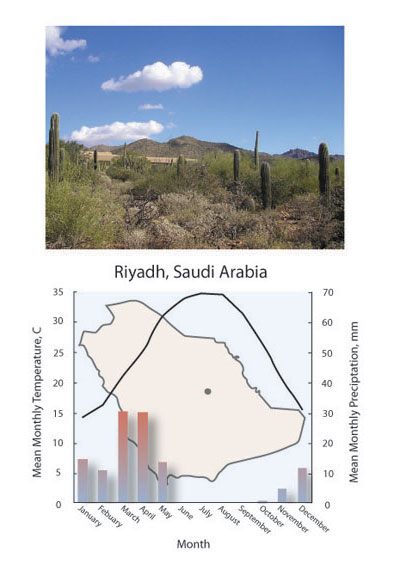 Terrestrial Biomes Learn Science At Scitable