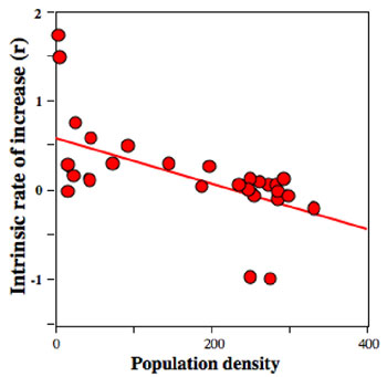 How populations grow the exponential and logistic equations learn representing the intrinsic rate of increase as a function of population density for a laboratory population ccuart Gallery