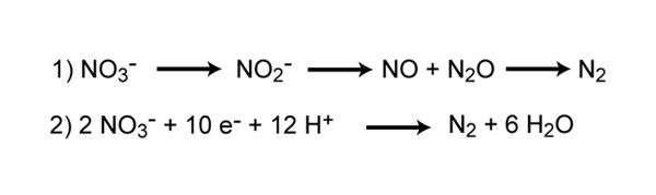 Reactions involved in denitrification