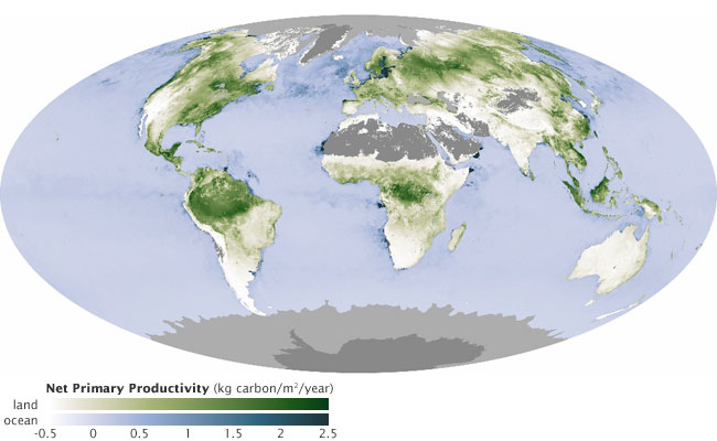 The global distribution of land and ocean net primary production (NPP) estimated from spectral data gathered by NASA's MODIS satellite