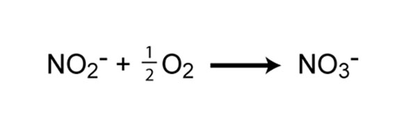 Chemical reaction of nitrite oxidation