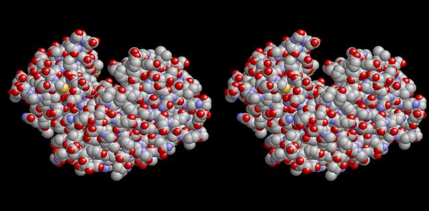 Molecular Modeling   B...