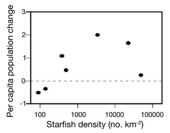 The relationship between per capita growth rate and starfish density show that the crown-of-thorns starfish (<i>Acanthaster planci</i>) is subject to a strong Allee effect.