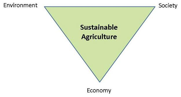 What is sustainable agriculture? | union of concerned scientists.