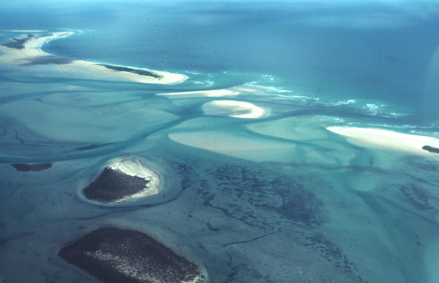 A series of low barrier islands separated by tidal inlets, at Corner Inlet, Victoria, Australia (A. D. Short).