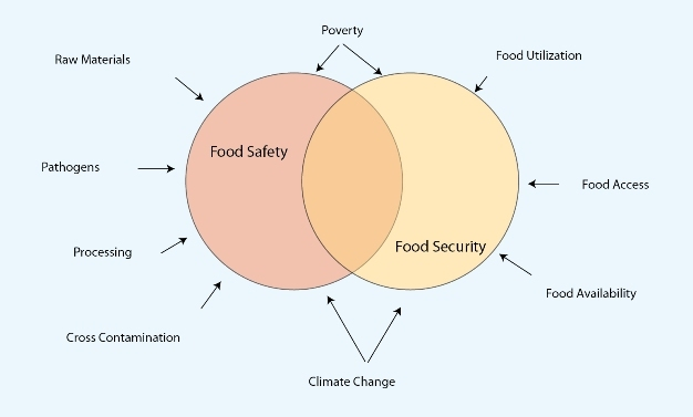 Food Safety and Food Security | Learn Science at Scitable