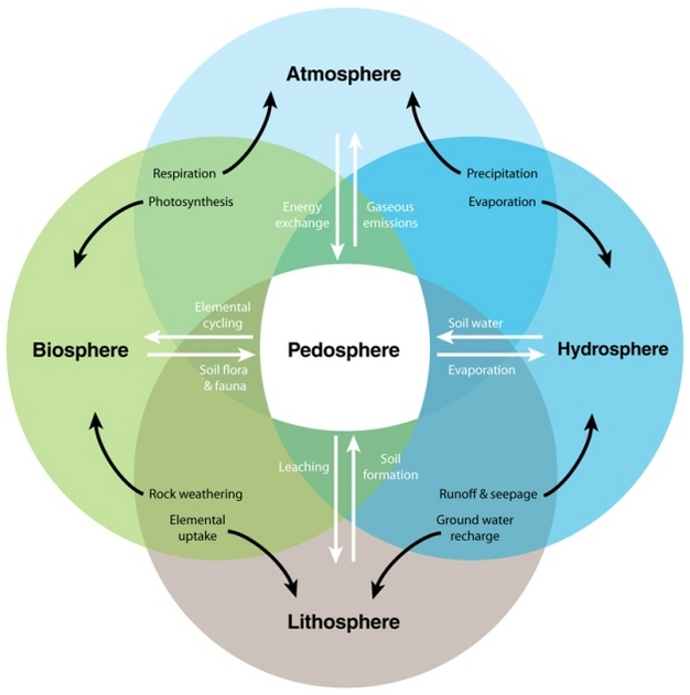 interactive processes linking the pedosphere with the atmosphere,  biosphere, hydrosphere, and lithosphere