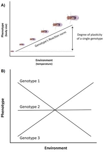the origin of life and evolutionary biochemistry dose k