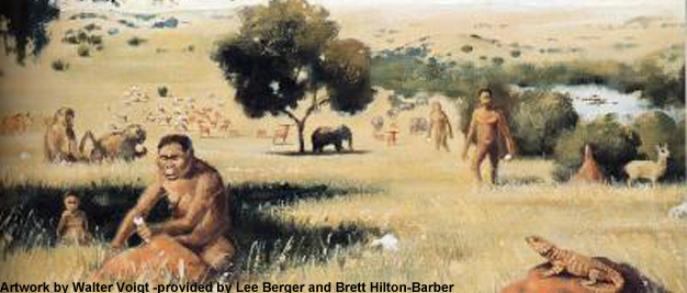 Overview of Hominin Evolution | Learn Science at Scitable