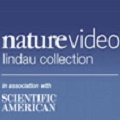 Nature Video Lindau Collection